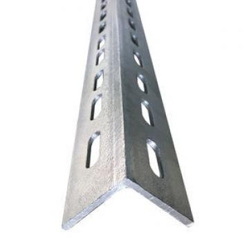 Galvanized Steel Angle with Holes (CZ-A30)